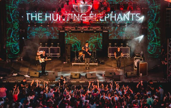 The Hunting Elephants